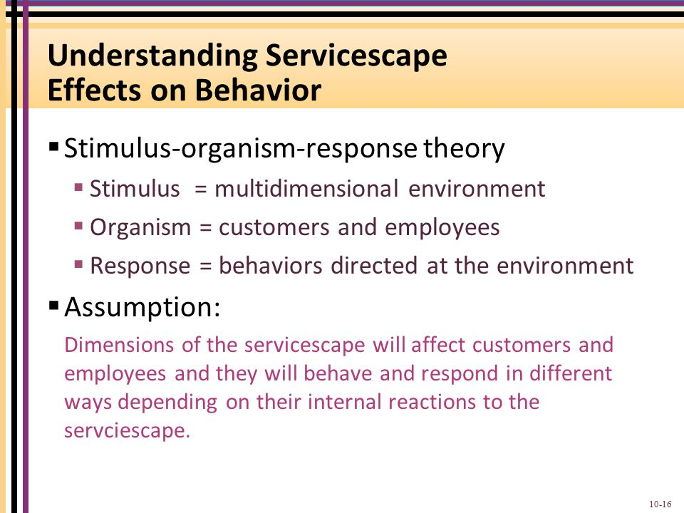 mcdonalds servicescape Mcdonald's was first opened in usa over 50 year  further, this report also  studies the service blueprint and servicescape that has been.
