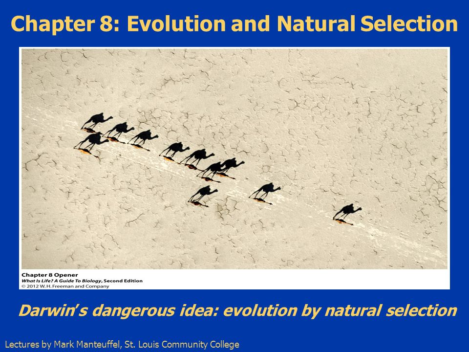 evolution and natural selection Evidence to support evolution and natural selection, of course, has accumulated over time, and now science accepts that evolution is a fact and that natural selection explains very well how adaptive evolution takes place.