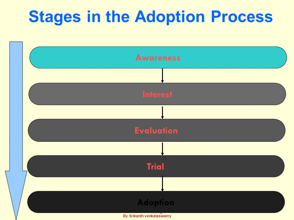Stages in the Adoption Process