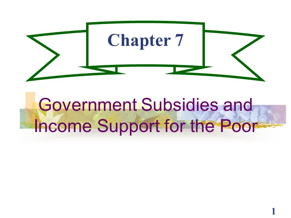 Government Subsidies and Income Support for the Poor