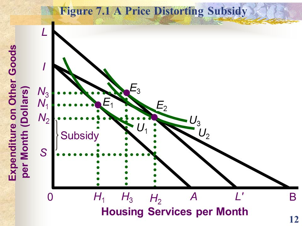 Figure 7.1 A Price Distorting Subsidy