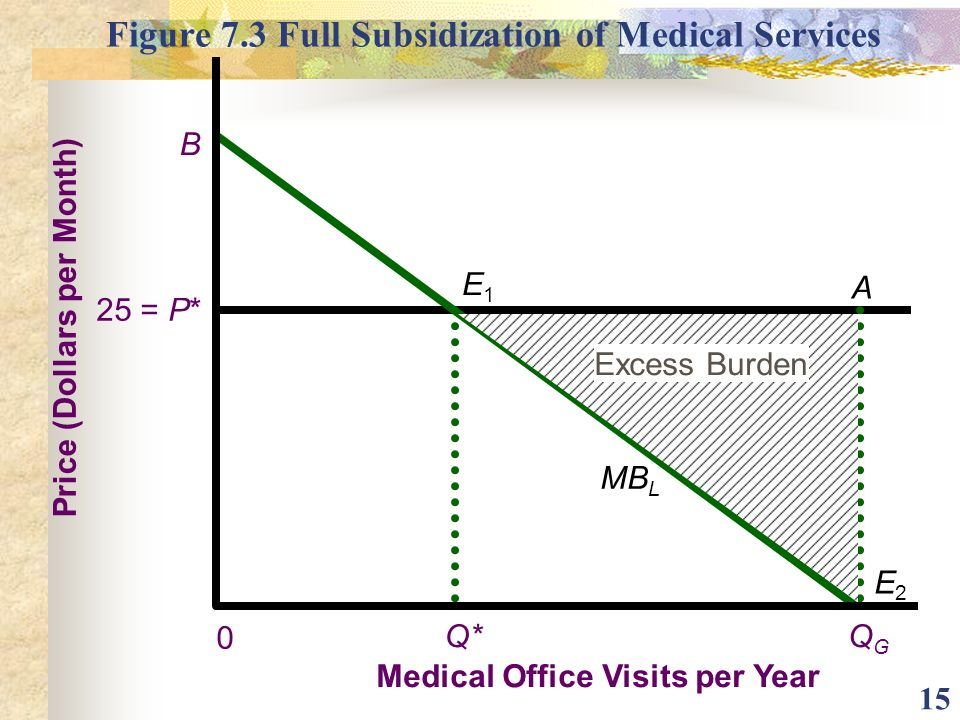 Figure 7.3 Full Subsidization of Medical Services
