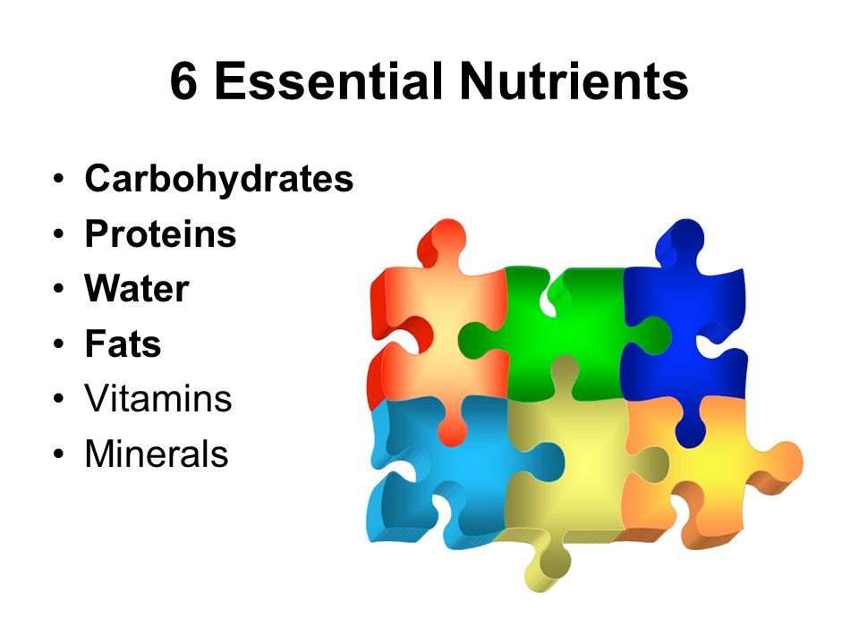 Nutrition (Day 3). - ppt download