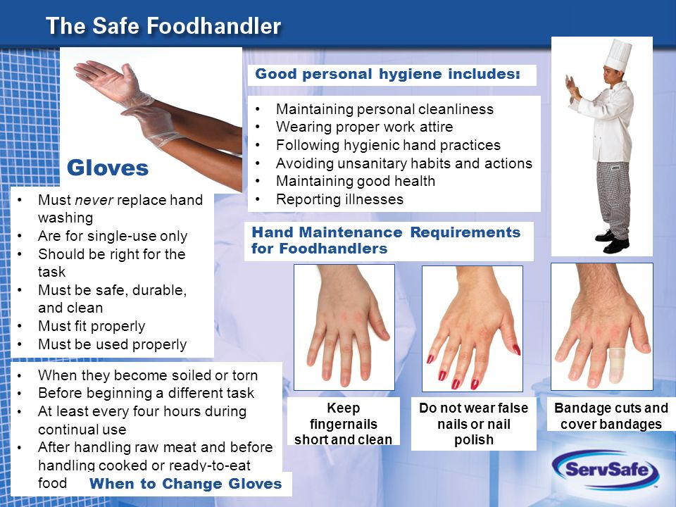 Hand Washing Food Service Workers