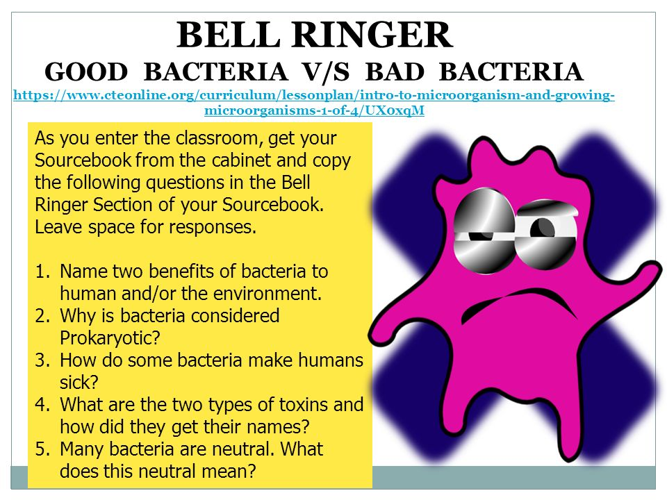 five benefits of microbes microorganisms essay Bacteria are single-celled organisms that exist in their millions, in every environment, inside or outside other organisms some are harmful, but others support life.