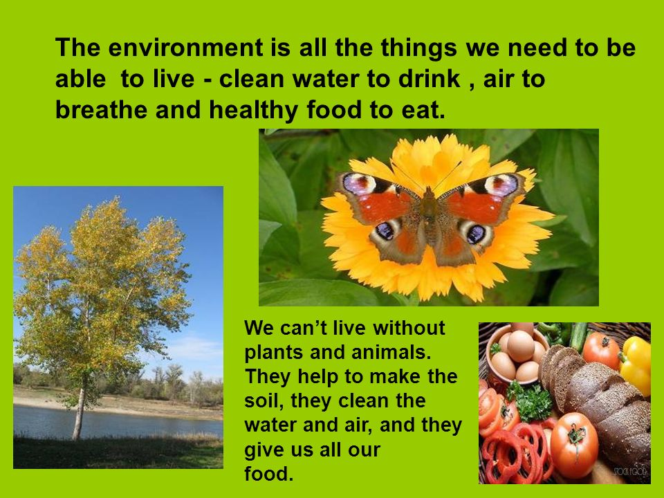 The environment is all the things we need to be able to live - clean water to drink , air to breathe and healthy food to eat.