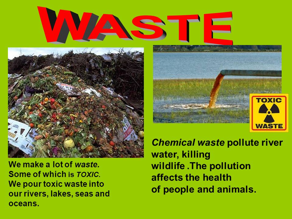 WASTE Chemical waste pollute river water, killing