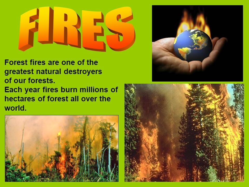 FIRES Forest fires are one of the greatest natural destroyers