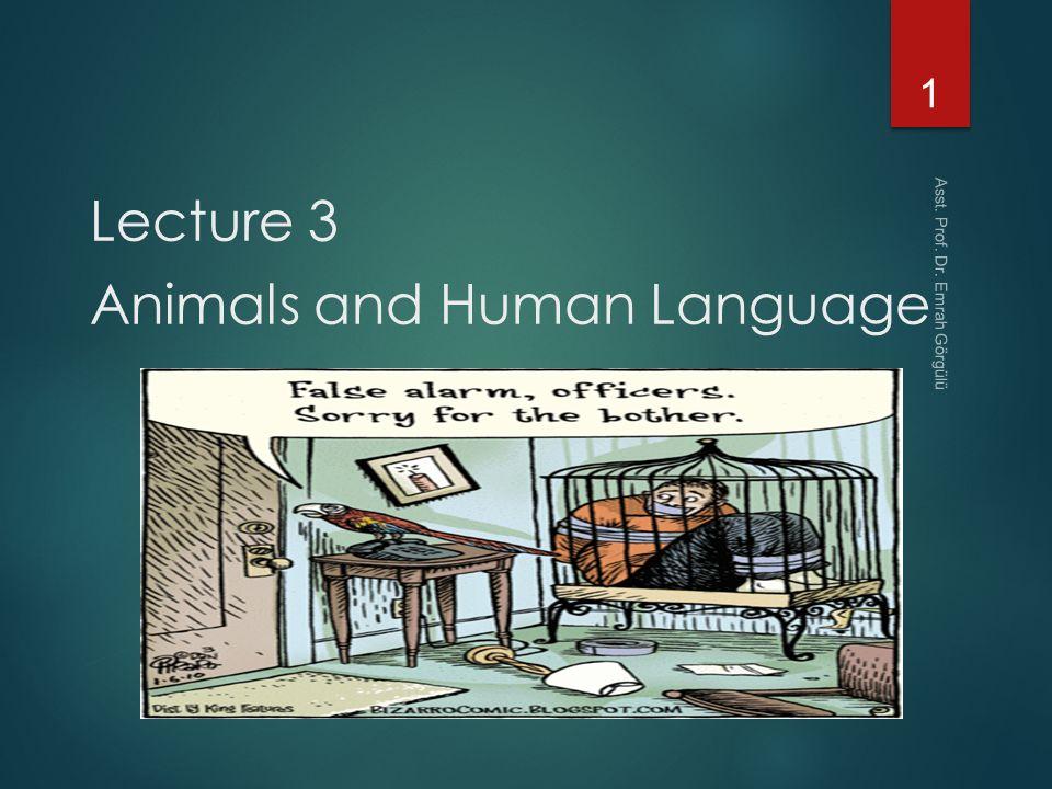 BBC - Future - Is language unique to humans?