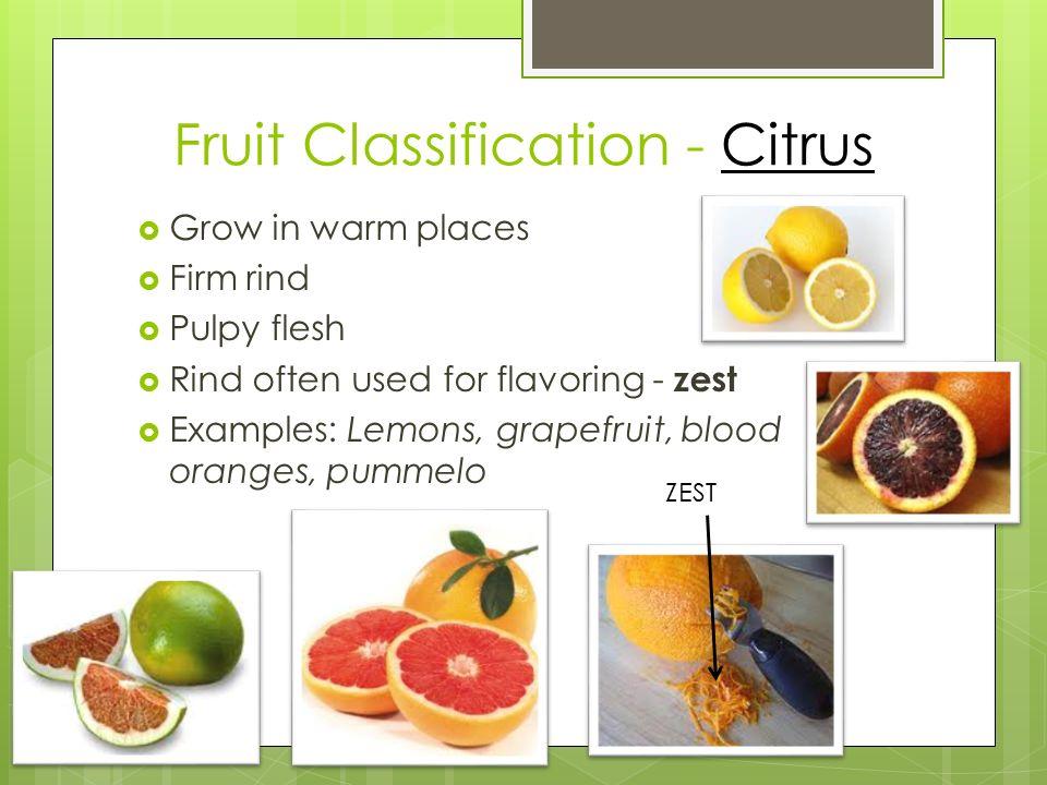 citrus lower classifications