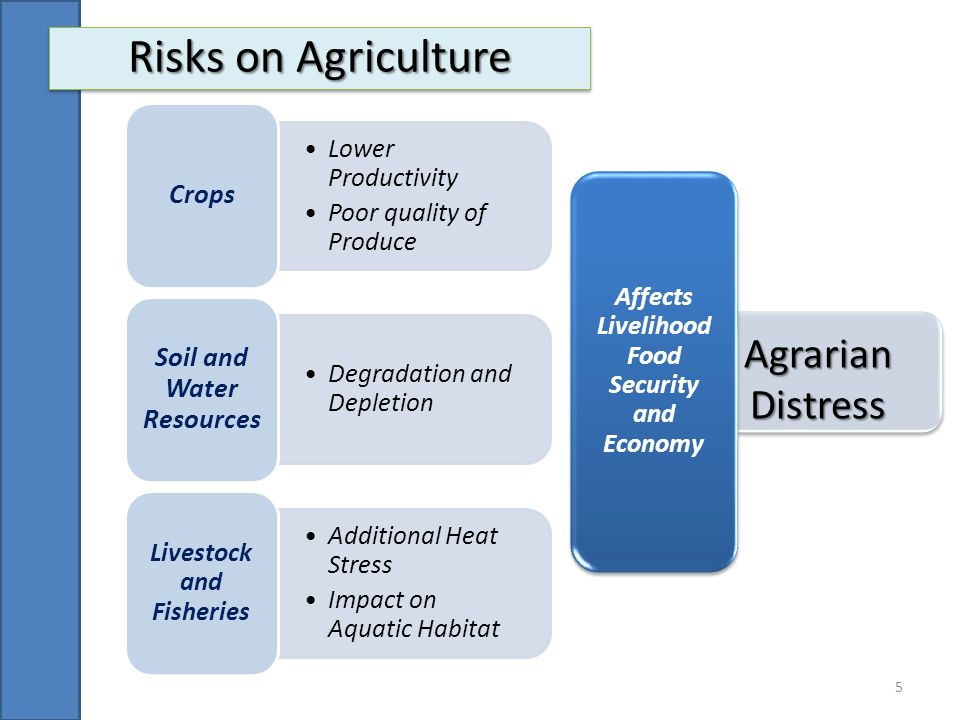 Risks on Agriculture Agrarian Distress Lower Productivity
