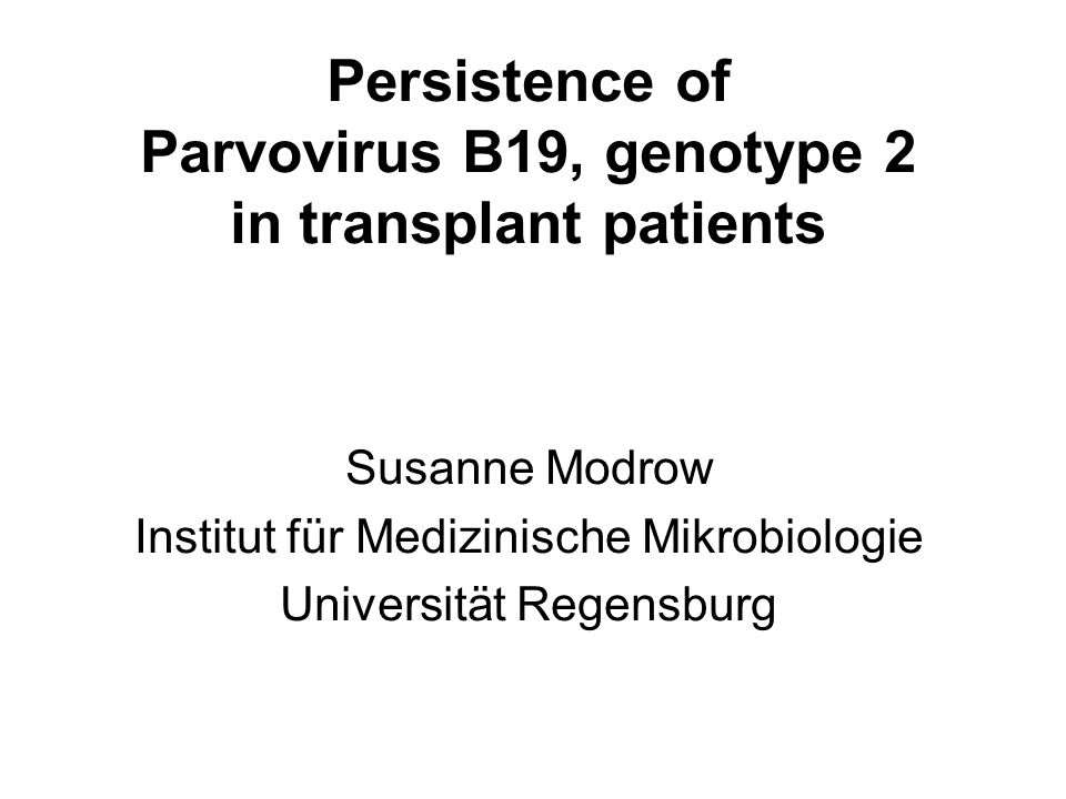 Persistence of Parvovirus B19, genotype 2 in transplant patients