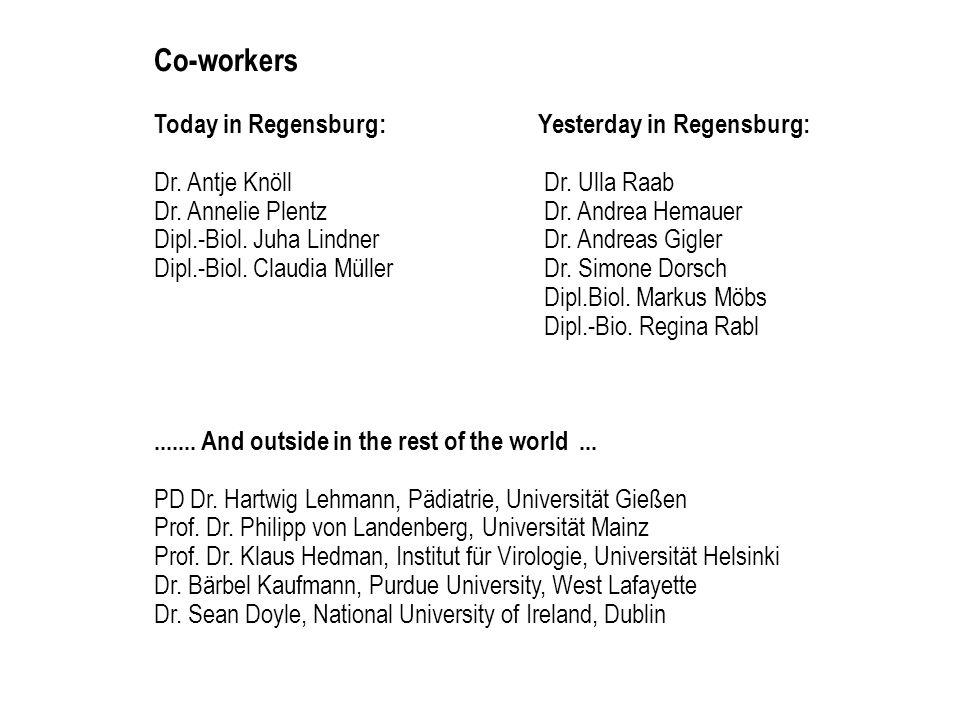 Co-workers Today in Regensburg: Yesterday in Regensburg:
