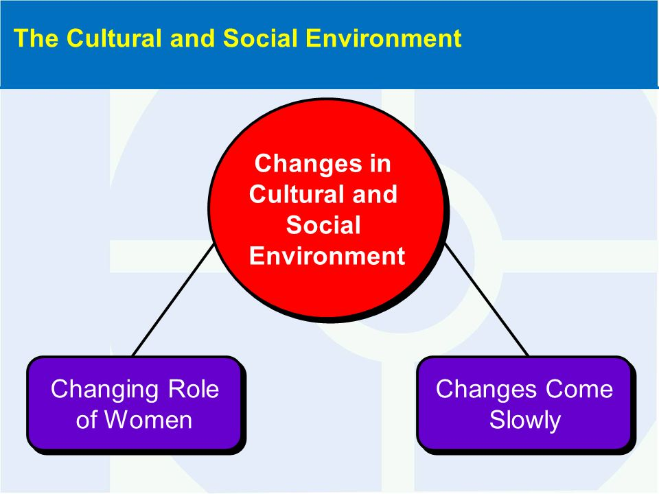 global cultural and social environment Globalization is primarily an economic process of integration that has social and cultural the environment globalization can be spread by global.