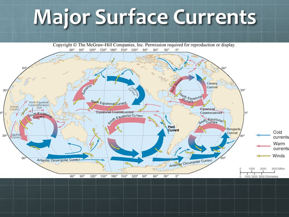 the major ocean surface current patterns essay Surface ocean currents can occur on local and global through the waters of all the major ocean basins rotation on weather patterns and ocean currents.