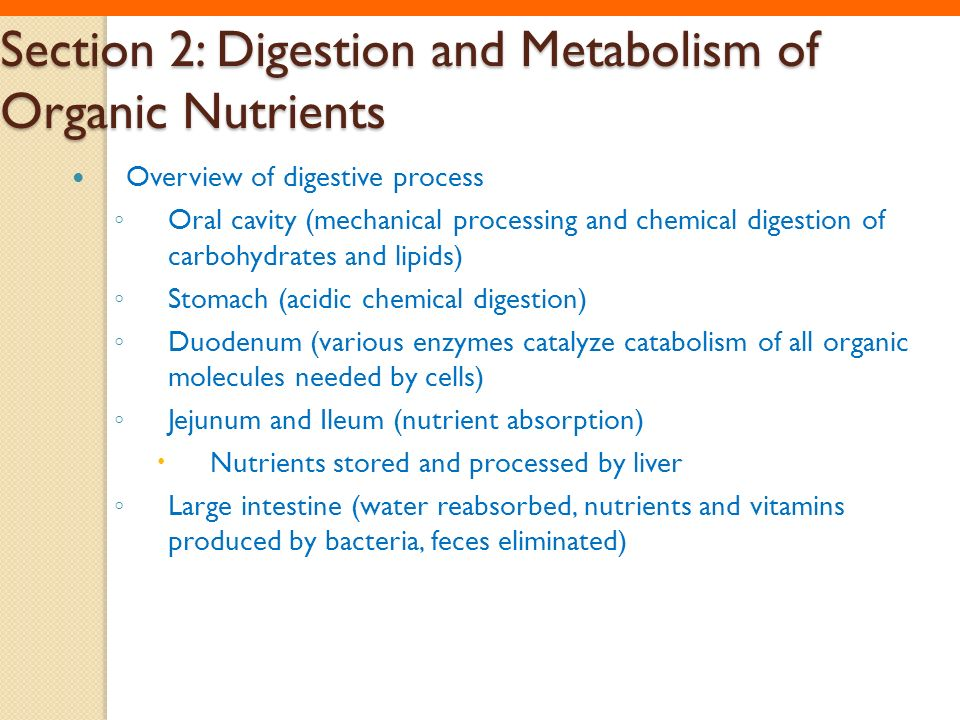 Section 2: Digestion and Metabolism of Organic Nutrients