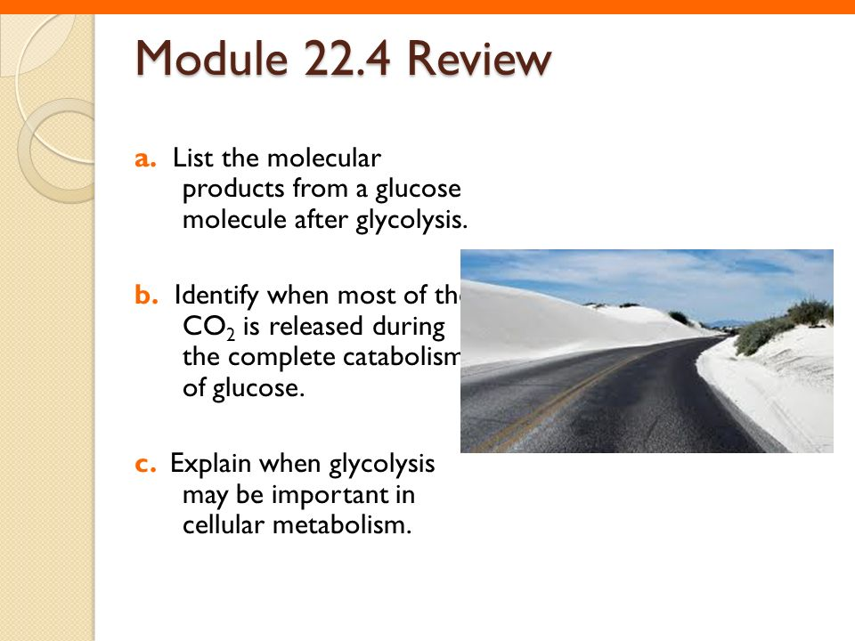 Module 22.4 Review a. List the molecular products from a glucose molecule after glycolysis.
