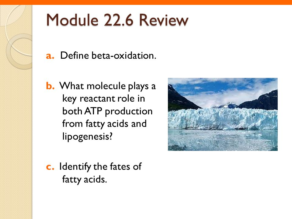 Module 22.6 Review a. Define beta-oxidation.