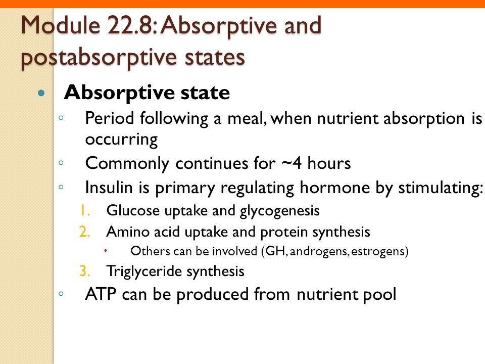 Module 22.8: Absorptive and postabsorptive states