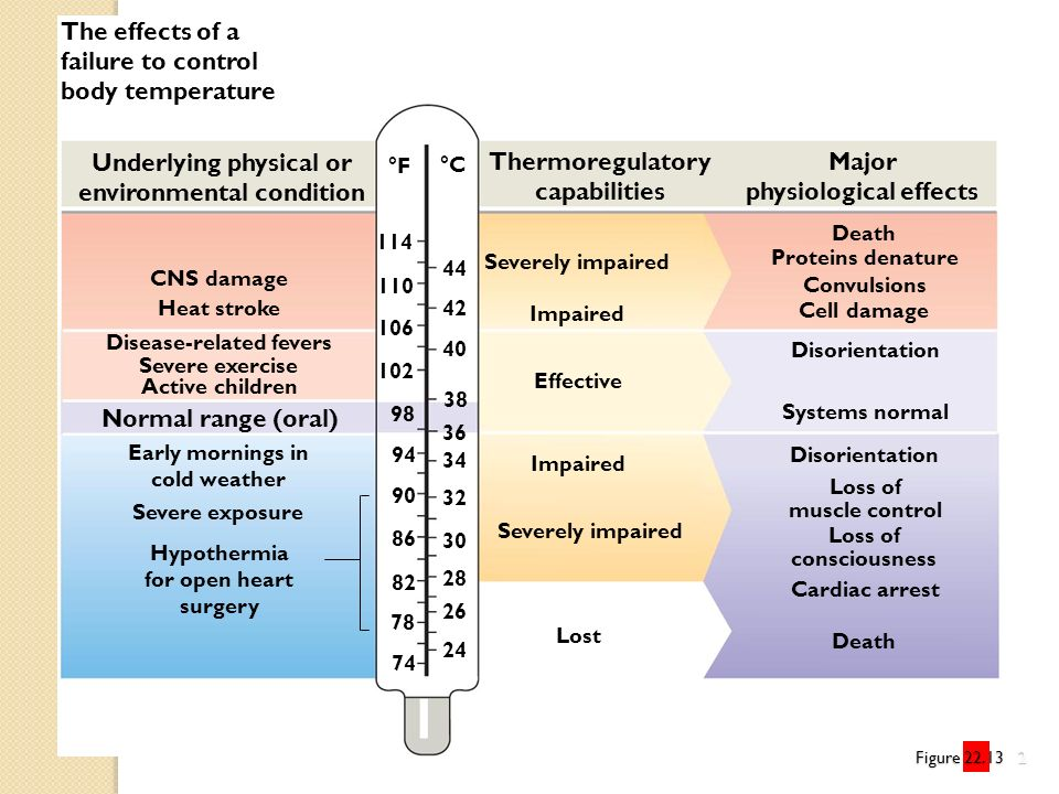 Underlying physical or environmental condition Thermoregulatory