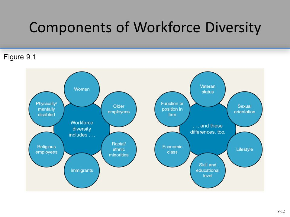 5 strategies to manage workforce diversity Employment equity and diversity management strategy page 1 of 12 proactively managing workforce diversity 4 5 remuneration strategy 10 6 reporting 11.