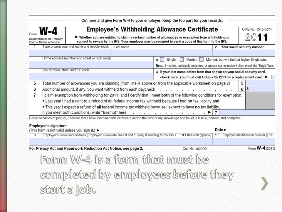 Economics Paycheck. - ppt video online download