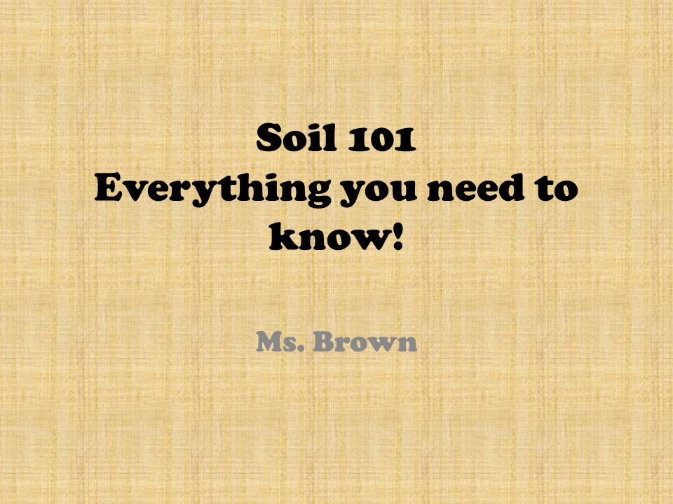 Soil 101 everything you need to know ppt download for Everything about soil