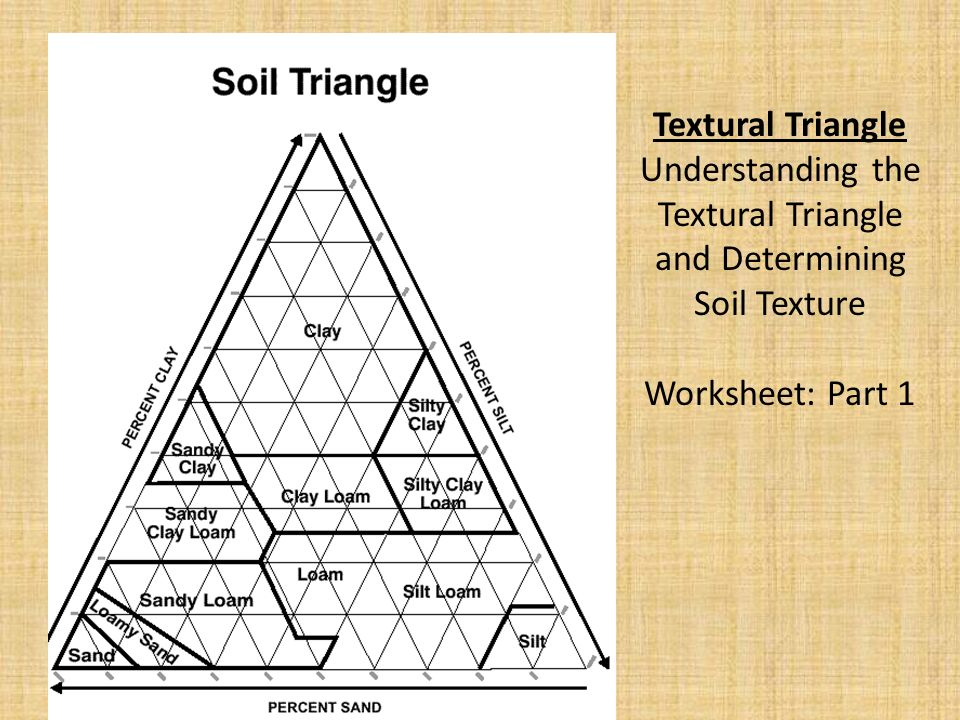 Soil 101 Everything You Need To Know Ppt Download