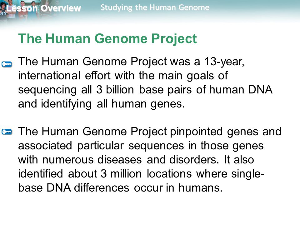 the international effort on human genome project Begun in 1990 as an international effort involving 18 countries, the project  involves mapping the entire genetic code for a human being the consequences  of.