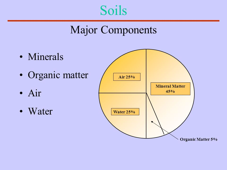 Soils Major Components Minerals Organic matter Air Water Air 25%