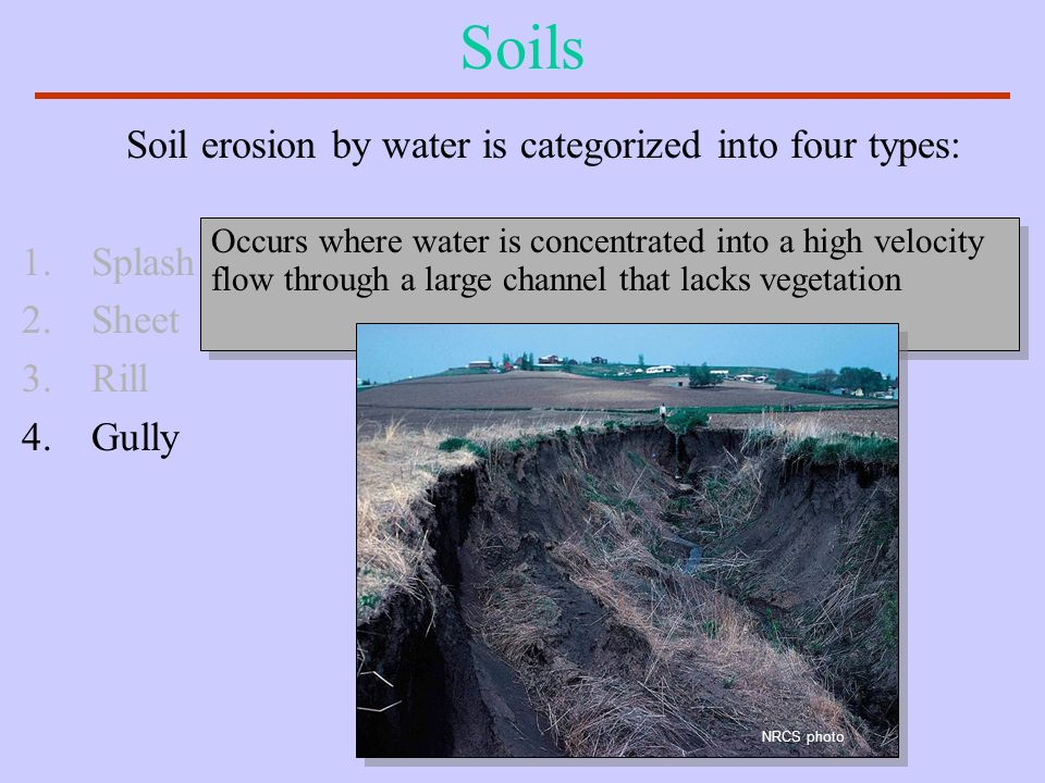 Soils Soil erosion by water is categorized into four types: Splash