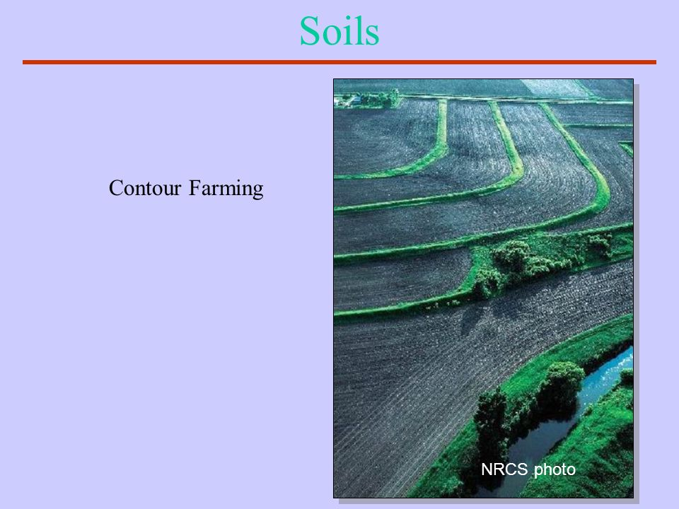 Soils Contour Farming NRCS photo