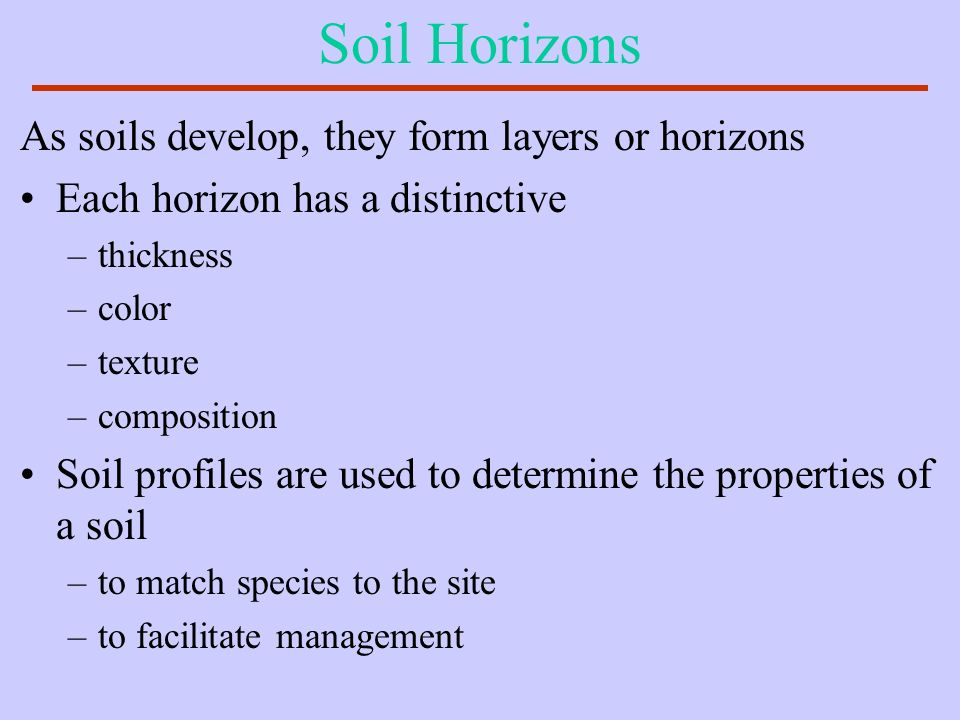 Soil Horizons As soils develop, they form layers or horizons
