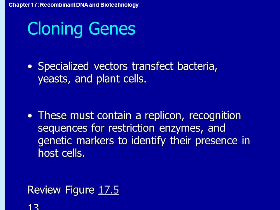 Cloning Genes Specialized vectors transfect bacteria, yeasts, and plant cells.
