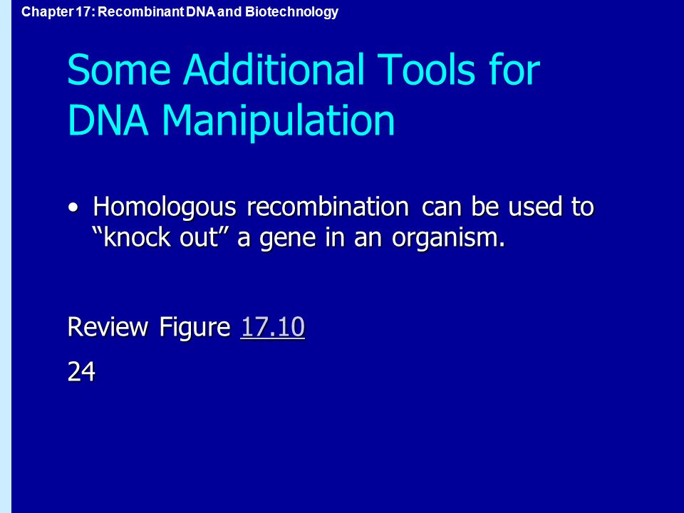 Some Additional Tools for DNA Manipulation