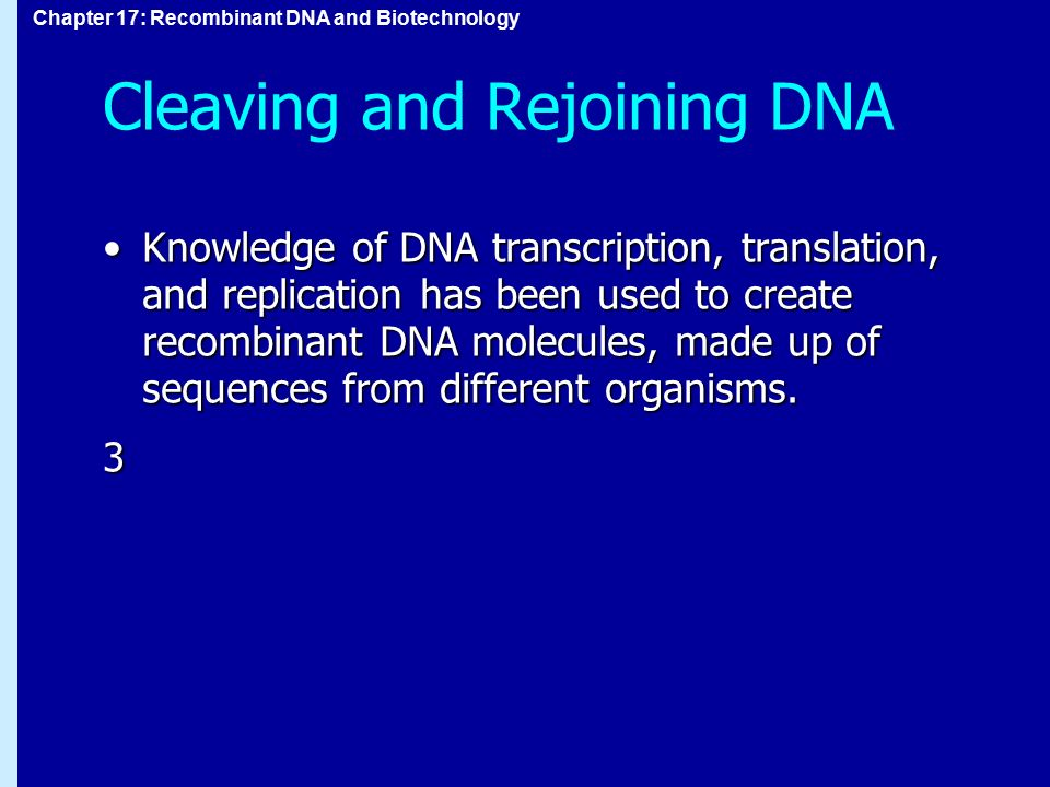 Cleaving and Rejoining DNA