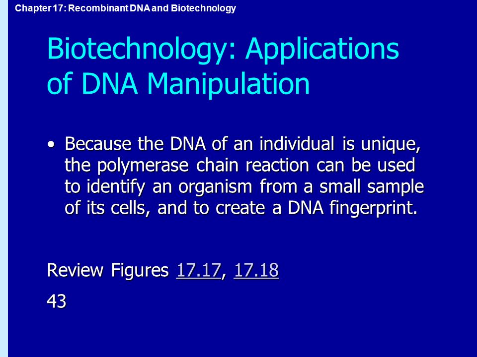 Biotechnology: Applications of DNA Manipulation