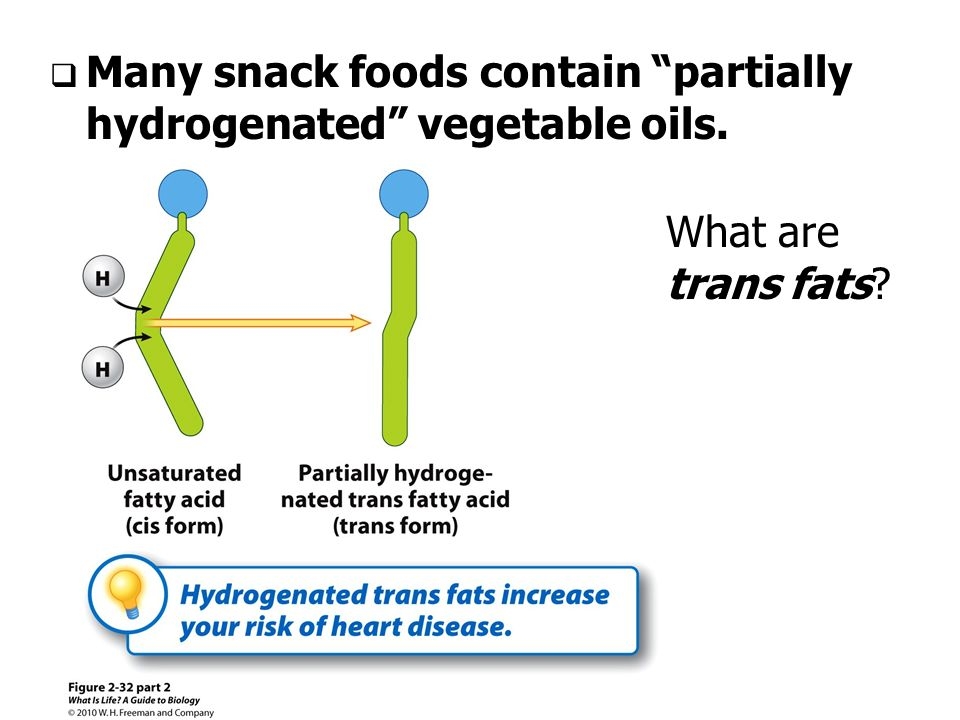 Hydrogenated Vegetable Oil Structure