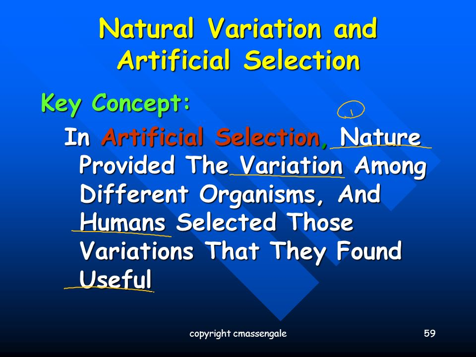 Inherited Variation In Natural Selection