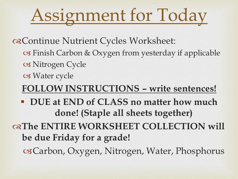 water carbon and nitrogen cycle worksheet Khafre – Phosphorus Cycle Worksheet