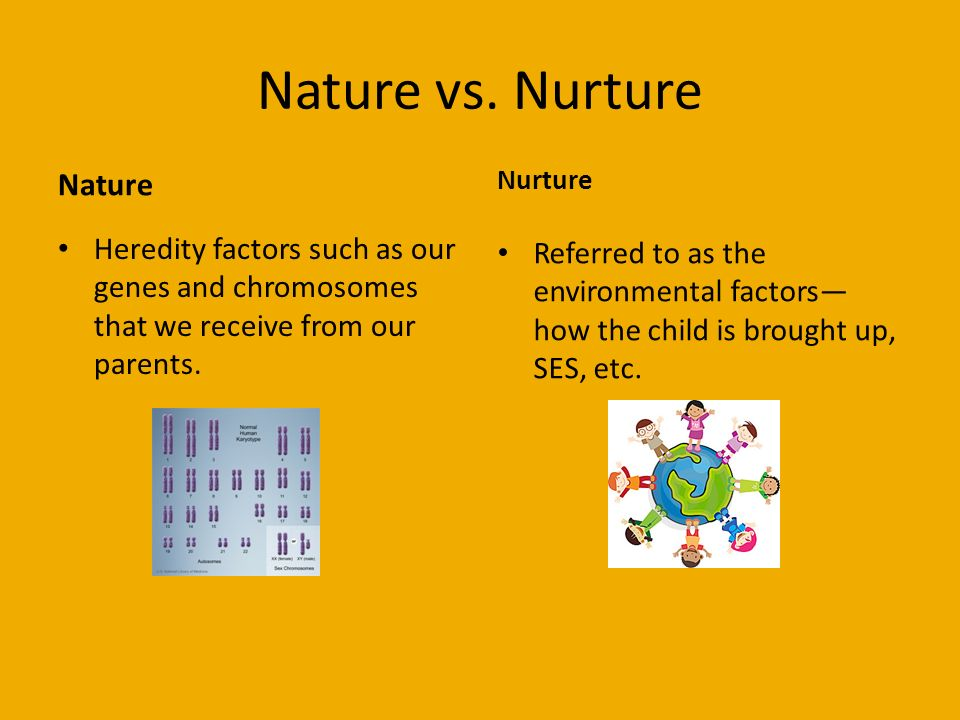 nature vs nurture in improving childs A child perspective or a child's perspective – what's the different  child in order to help the child develop harmony with itself and with nature.