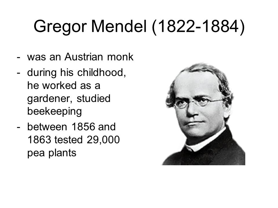 gregor mendel a roman catholic monk Roman catholic scientists • gregor mendel (1822–1884): he was an augustinian monk and the father of genetics • giuseppe mercalli.