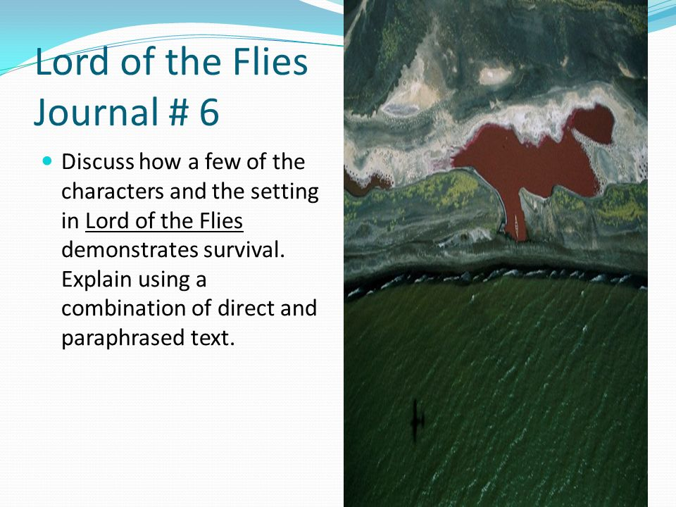 Lord of the flies society essay
