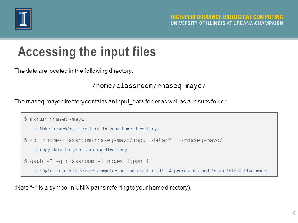 Accessing the input files