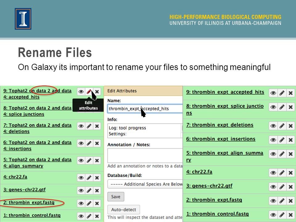 Rename Files On Galaxy its important to rename your files to something meaningful