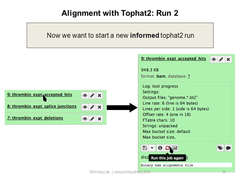 Alignment with Tophat2: Run 2