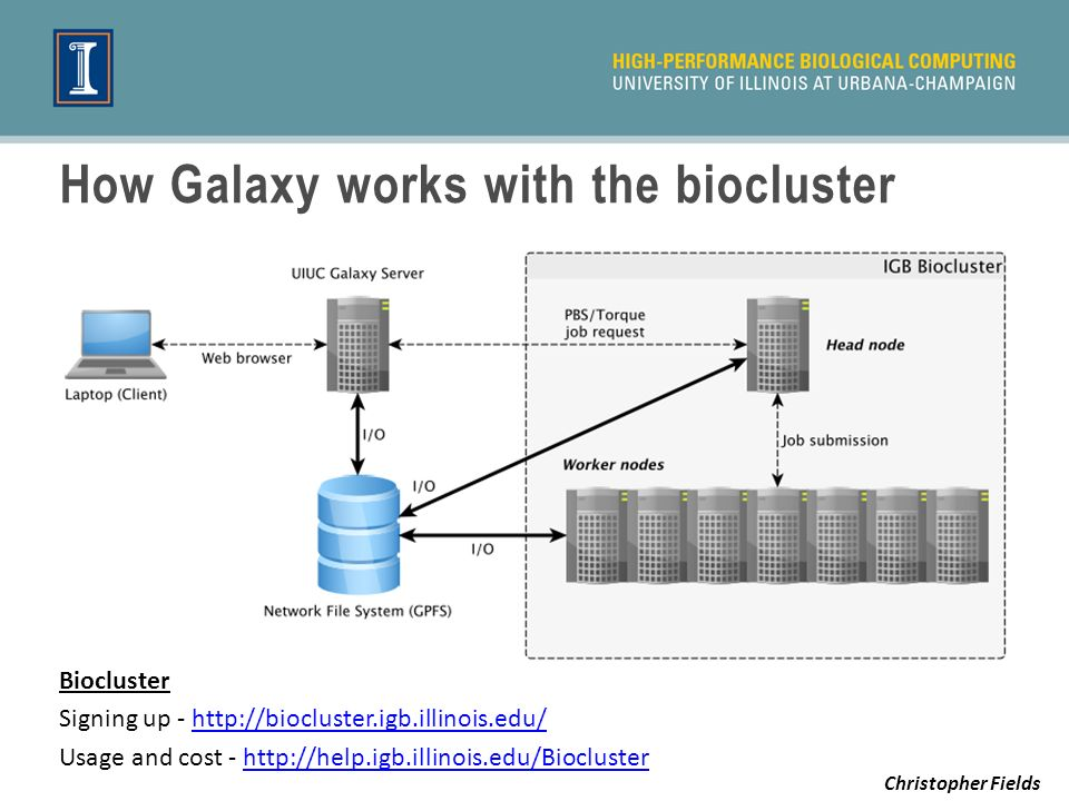 How Galaxy works with the biocluster