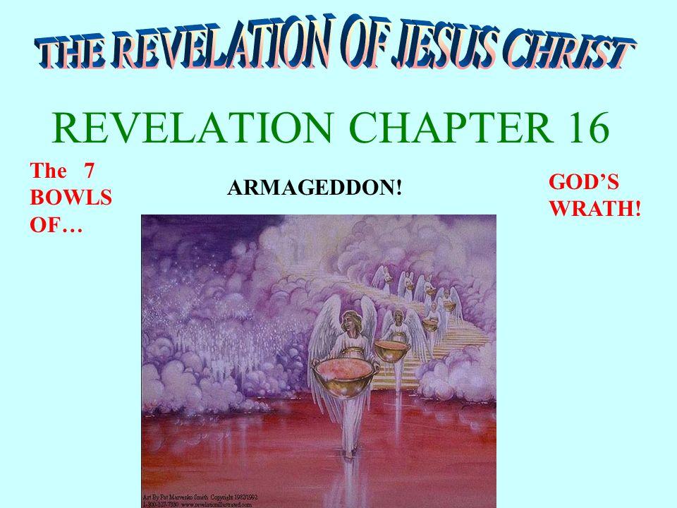 THE REVELATION OF JESU...
