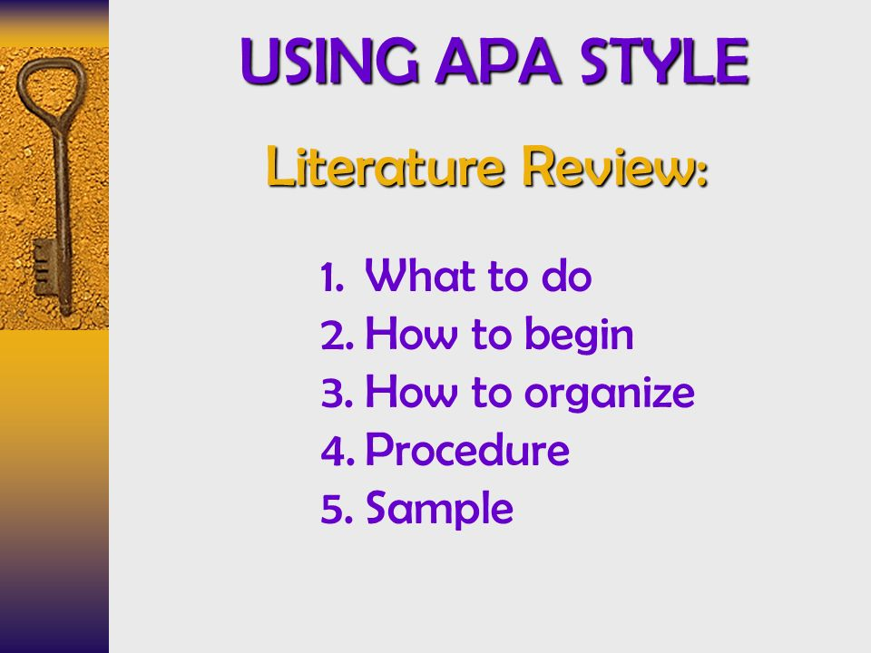 sample lit review apa