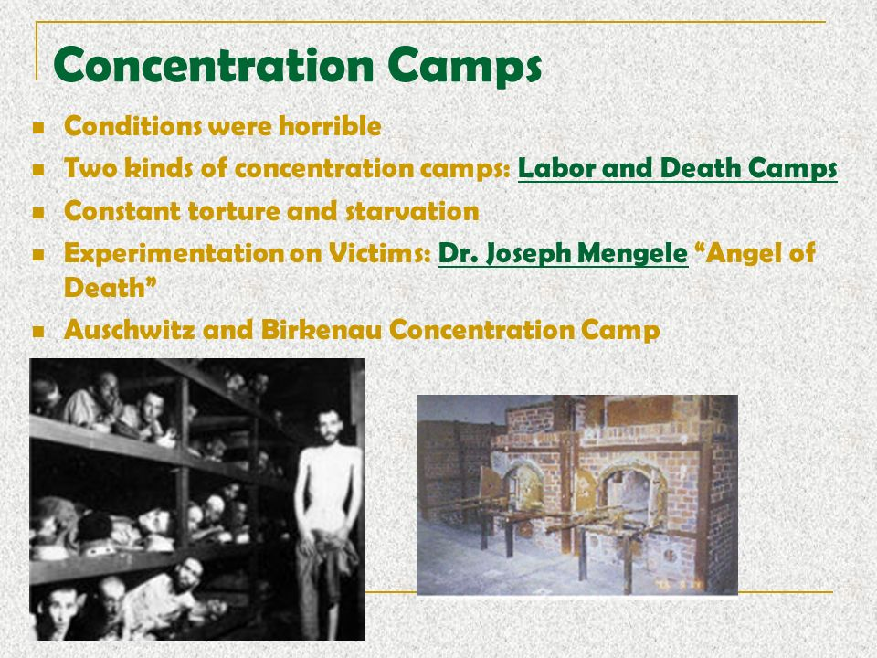 the horrible medical conditions of concentration camps As if sending thousands of people to their almost certain deaths wasn't already bad enough, nazis decided to charge people for the privilege (you know, to really impress satan) to be sent to an extermination camp, a jewish person had to pay the fee for a standard-fare ticket.